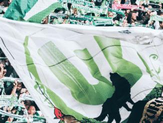Fans Wolfsburg
