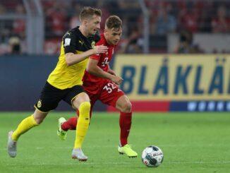 Lieblingsteams der deutschen Fans: Bayern und der BVB. ©AFP