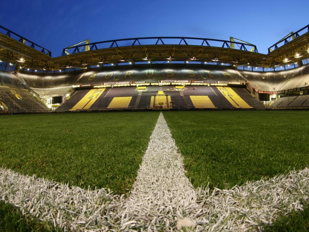 Der BVB wurde für den schönsten Rasen ausgezeichnet. ©FIRO/SID