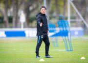 Hertha-Trainer Labbadia trübt Aussicht auf Boateng-Comeback