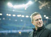 """Rangnick will zu Schalke nicht """"nie"""" sagen"""
