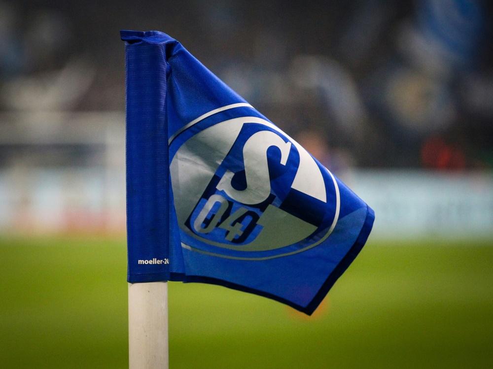 Auf Schalke hat man Verständnis für die Kritik gezeigt . ©FIRO/SID