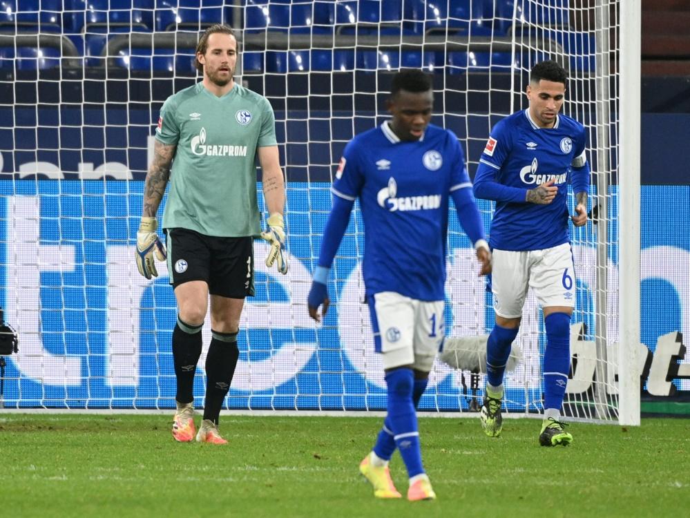 Schalke für Wettanbieter Abstiegskandidat Nummer eins. ©SID INA FASSBENDER