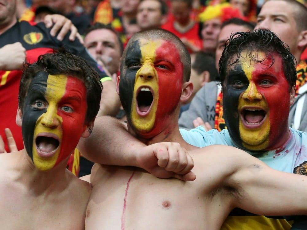 Laut Wissenschaftlern dürfen sich die Belgier freuen. ©FIRO/SID