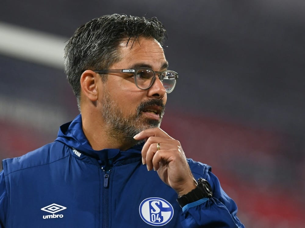 David Wagner wird Trainer bei den Young Boys Bern. ©SID CHRISTOF STACHE