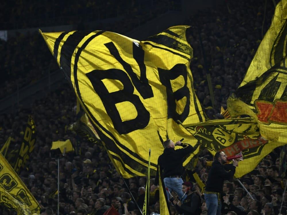 Der BVB verpflichtet Top-Talent Abdoulaye Kamara. ©SID INA FASSBENDER