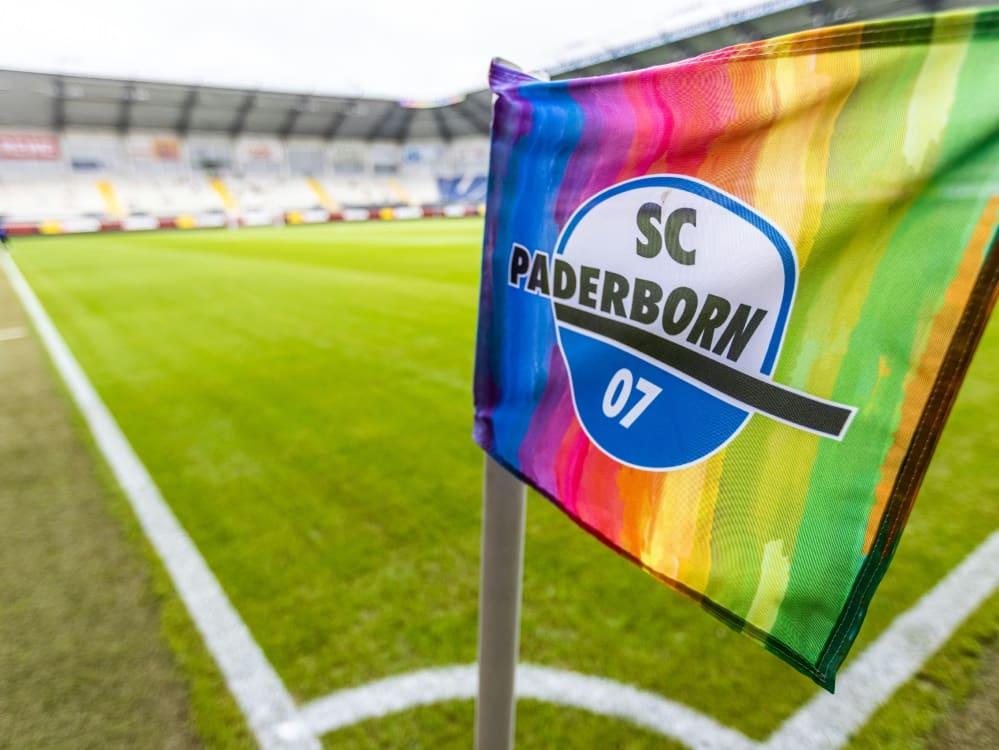 Paderborn will Zusammenarbeit mit Ajax Amsterdam knüpfen. ©FIRO/SID
